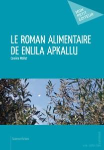 """Couverture du livre """"Le roman alimentaire de Enlila Apkallu"""" par Caroline Maillet"""