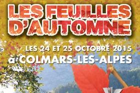 Festival du livre du Haut-Verdon Les feuilles d'automne