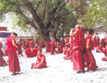 Moines dans un monastère Tibet Dans les pas d'Alexandra David-Néel