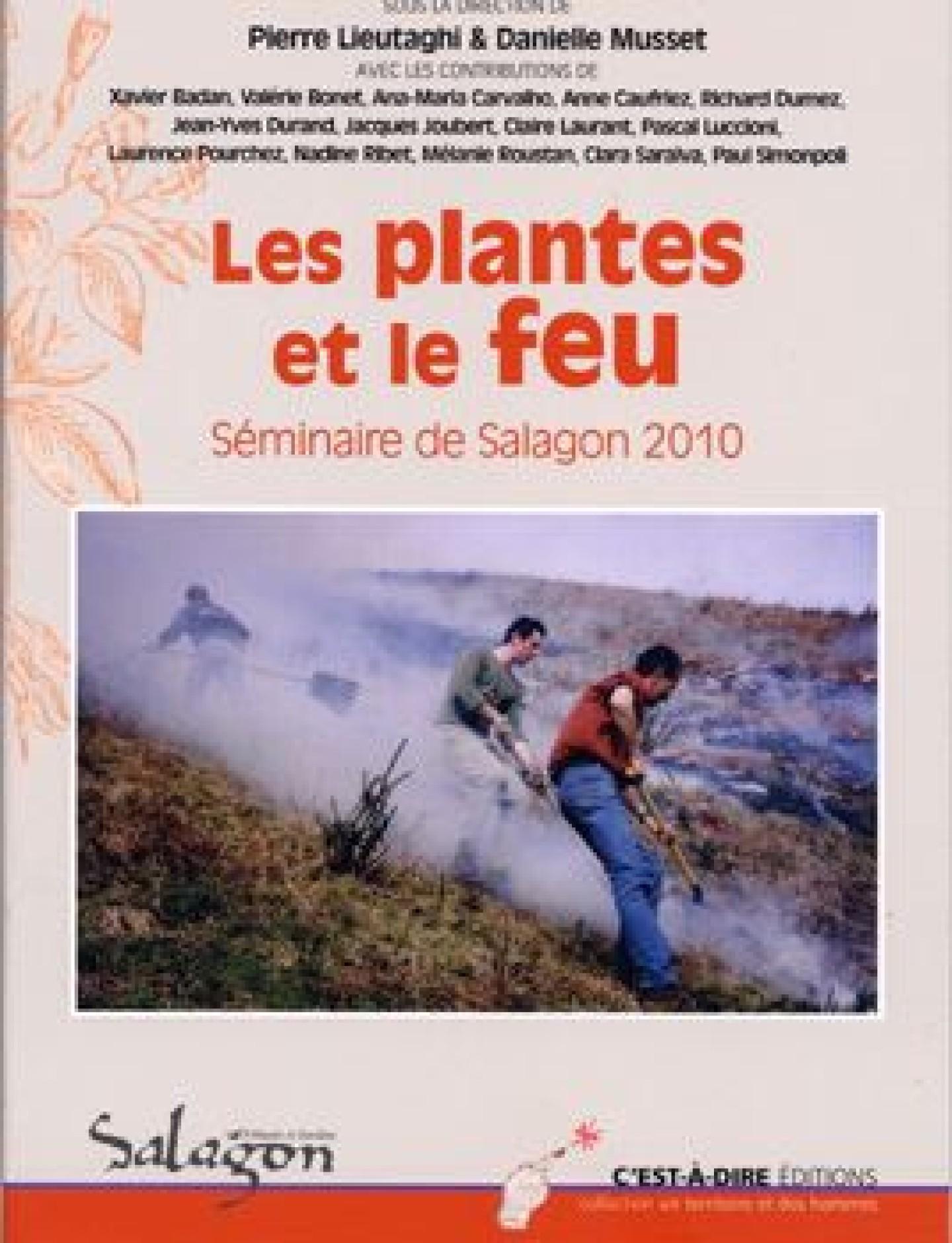 Les plantes et le feu. Séminaire de Salagon 2010 - Pierre Lieutaghi,Danielle Musset