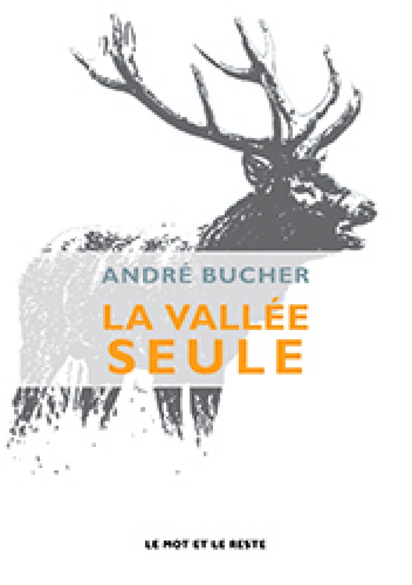 La Vallée seule, André Bucher, roman, éditions le mot et le reste, 2013