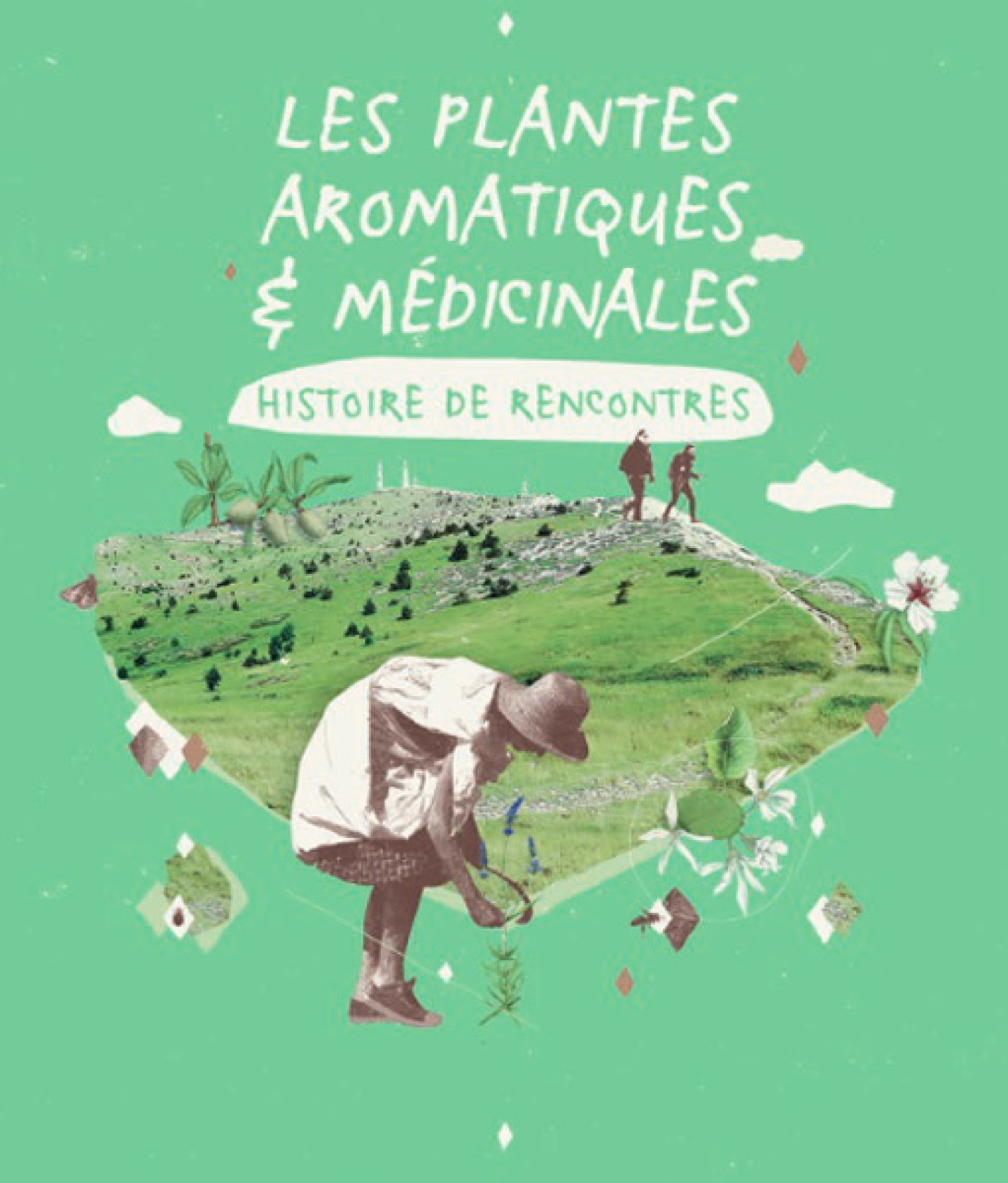 Les plantes aromatiques et médicinales - Histoire de rencontres